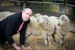 WLM - sheep photo 1